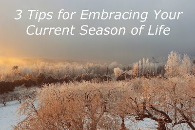 tips season life